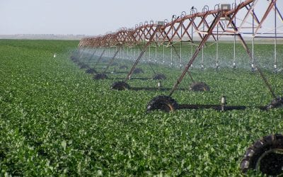 RRWCD Partners with CO to Provide Additional CREP Incentives for Irrigators Near the South Fork